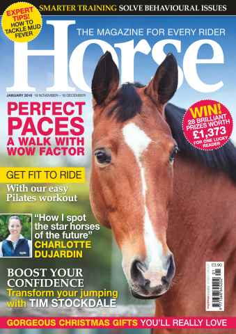 Horse issue January 2016