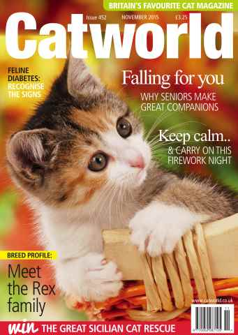Cat World issue NOVEMBER 2015
