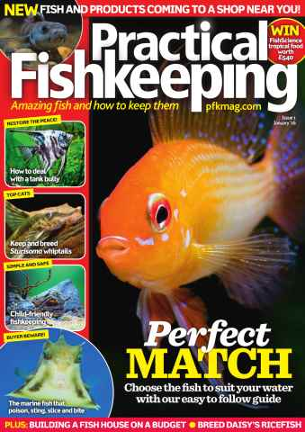 Practical Fishkeeping issue January 2016