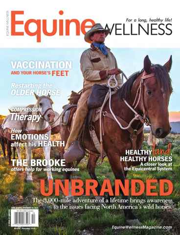 Equine Wellness issue October/November 2015
