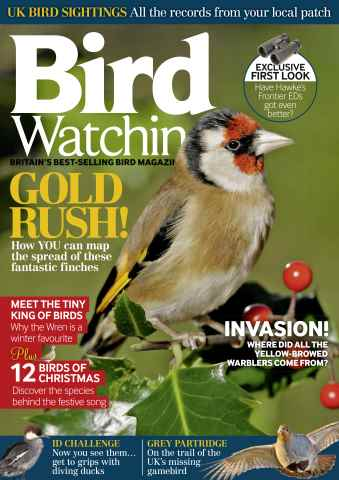 Bird Watching issue December 2015