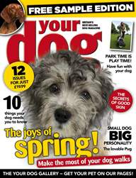 Your Dog Magazine FREE sample issue issue Your Dog Magazine FREE sample issue