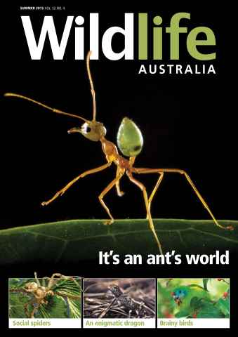 Wildlife Australia issue Wildlife Australia Summer 2015