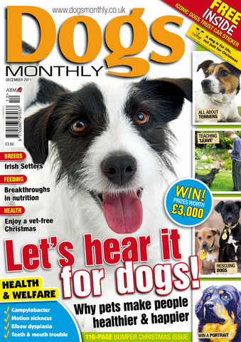 Dogs Monthly issue December 2011