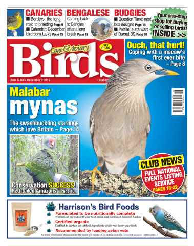 Cage & Aviary Birds issue No. 5884 Malabar mynas