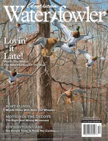 American Waterfowler issue Volume VI, Issue VI