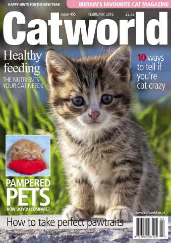 Cat World issue FEBRUARY 2016