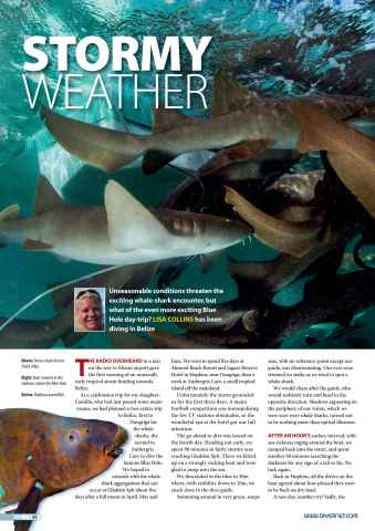 DIVER Preview 30