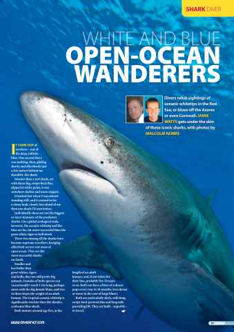 DIVER Preview 81