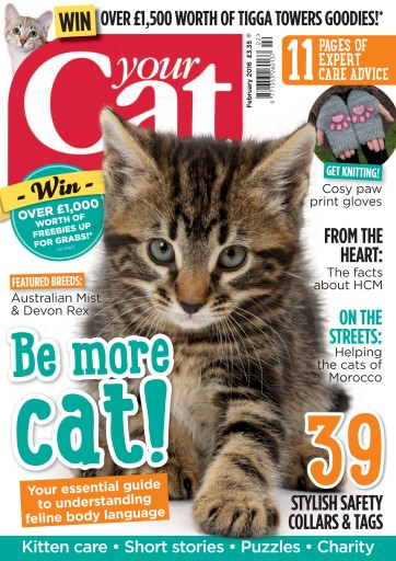 Your Cat issue Your Cat Magazine February 2016