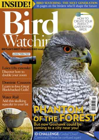 Bird Watching issue February 2016