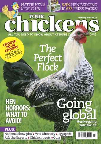 Your Chickens issue February 2016