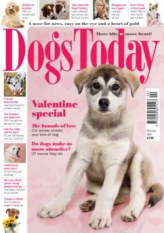 Dogs Today Magazine issue February 2016