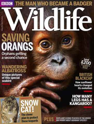 BBC Wildlife Magazine issue February 2016