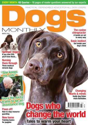 Dogs Monthly issue March 2016