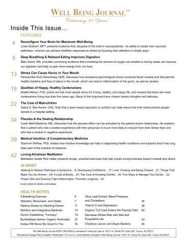 Well Being Journal Preview 3