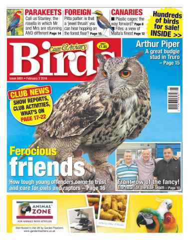 Cage & Aviary Birds issue No. 5891 Ferocious friends
