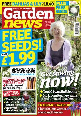 Garden News issue 6th January 2016