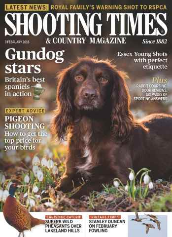 Shooting Times & Country issue 3rd February 2016
