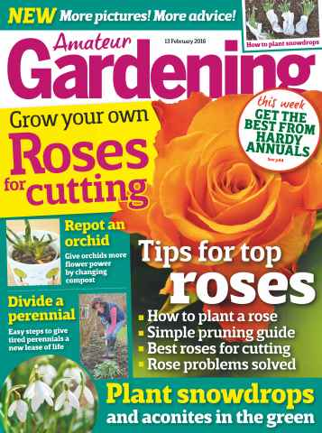 Amateur Gardening issue 13th February 2016