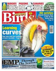 Cage & Aviary Birds issue No. 5896 Learning Curves