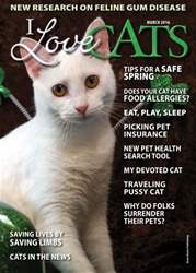 I Love Cats issue March 2016