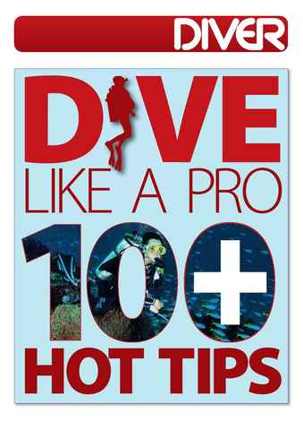 DIVER issue DIVE LIKE A PRO