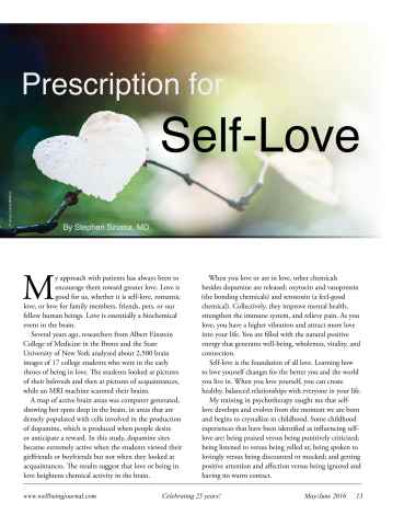 Well Being Journal Preview 15