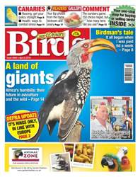 Cage & Aviary Birds issue No. 5900 A land of giants