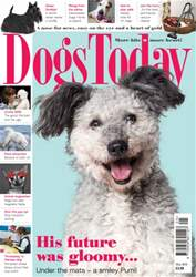 Dogs Today Magazine issue May 2016