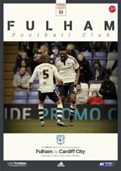 Fulham FC issue Fulham v Cardiff 2015-16