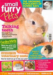 Small Furry Pets issue No. 28 Talking Teeth
