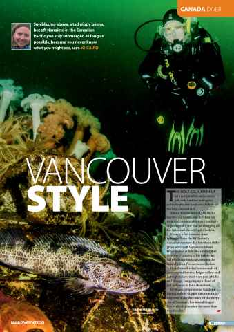 DIVER Preview 55