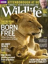 BBC Wildlife Magazine issue Spring 2016