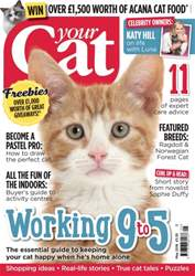 Your Cat issue Your Cat Magazine May 2016