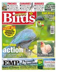 Cage & Aviary Birds issue No. 5903 Non-stop action