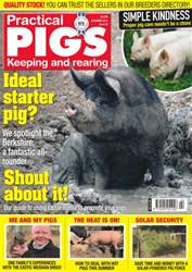 Practical Pigs issue No. 23 Ideal Starter Pig?