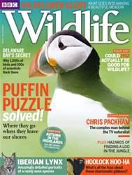 BBC Wildlife Magazine issue May 2016