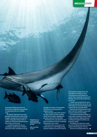 DIVER Preview 21