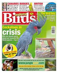 Cage & Aviary Birds issue No. 5908 Cockatoos In Crisis