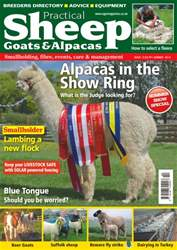 Sheep, Goats  & Alpaca issue No. 13 Alpacas In The Show Ring