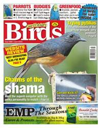 Cage & Aviary Birds issue No. 5909 - Charms Of The Shama