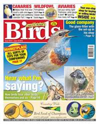 Cage & Aviary Birds issue No. 5910 - Hear What I'm Saying?