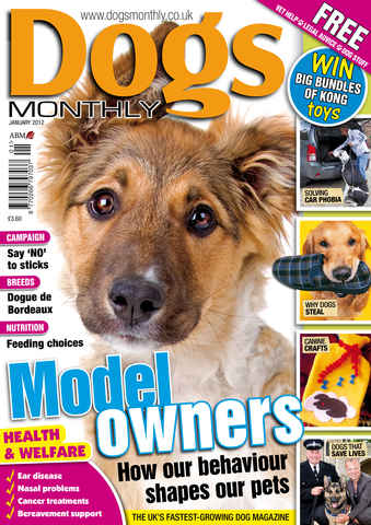 Dogs Monthly issue January 2012