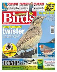 Cage & Aviary Birds issue No. 5913 Long-tongued twister