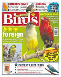 Cage & Aviary Birds issue No. 5915 - Judging Foreign