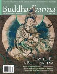 Buddhadharma issue Fall 2016