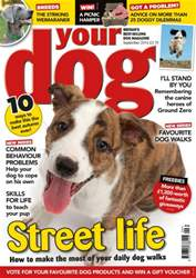 Your Dog issue Your Dog Magazine September 2016