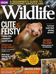 BBC Wildlife Magazine issue August 2016