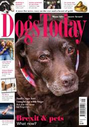 Dogs Today Magazine issue September 2016